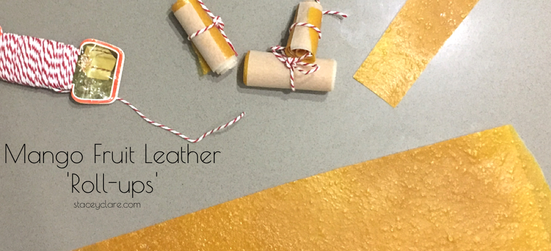 Fruit Leather 'Roll-Ups' – Video Recipe