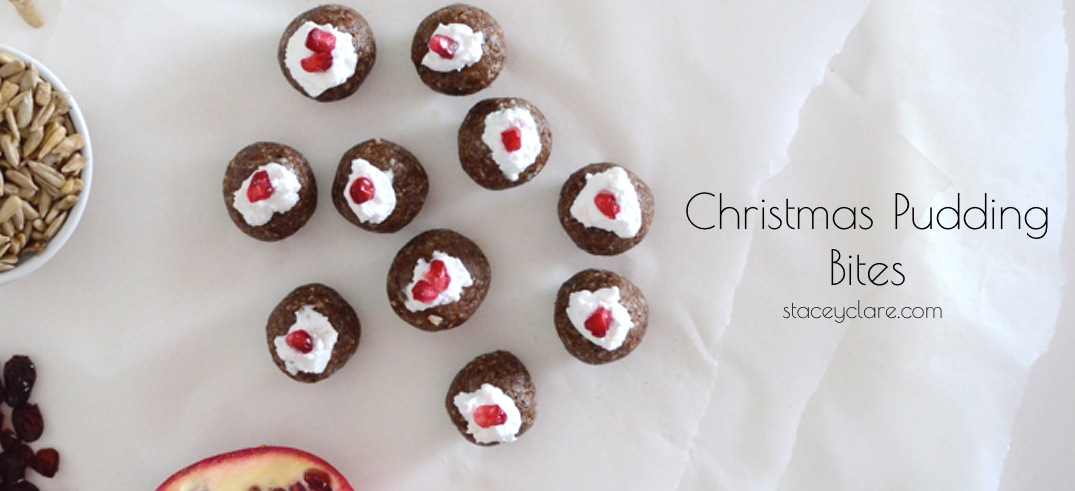 raw-christmas-pudding-bites